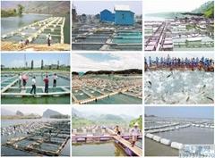 淡海水养鱼网箱