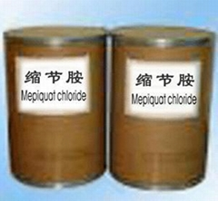 sell Mepiquat Chloride PGR 98%TC