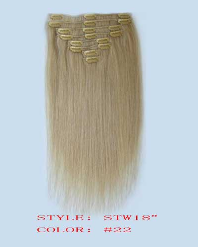 Clip in Hair Extension, clip Hair, Wig Hair Extension 2