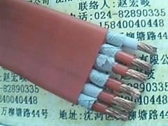 耐高温柔性硅橡胶扁电缆