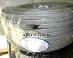 屏蔽防護型電熱帶