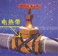 沈阳瑞华电伴热带电缆 4