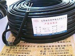 沈阳瑞华电伴热带电缆