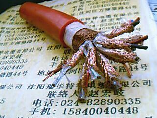 High temperature silicone rubber cable 2