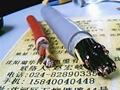 高柔性电缆