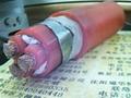 油井加热电缆