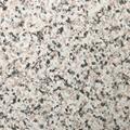 Starlight Marble ALU8031