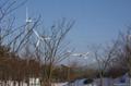 wind generator  400W to 100kW 4