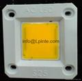 AC LED 220V LED AC COB LED MODULE 30w 50w 20w