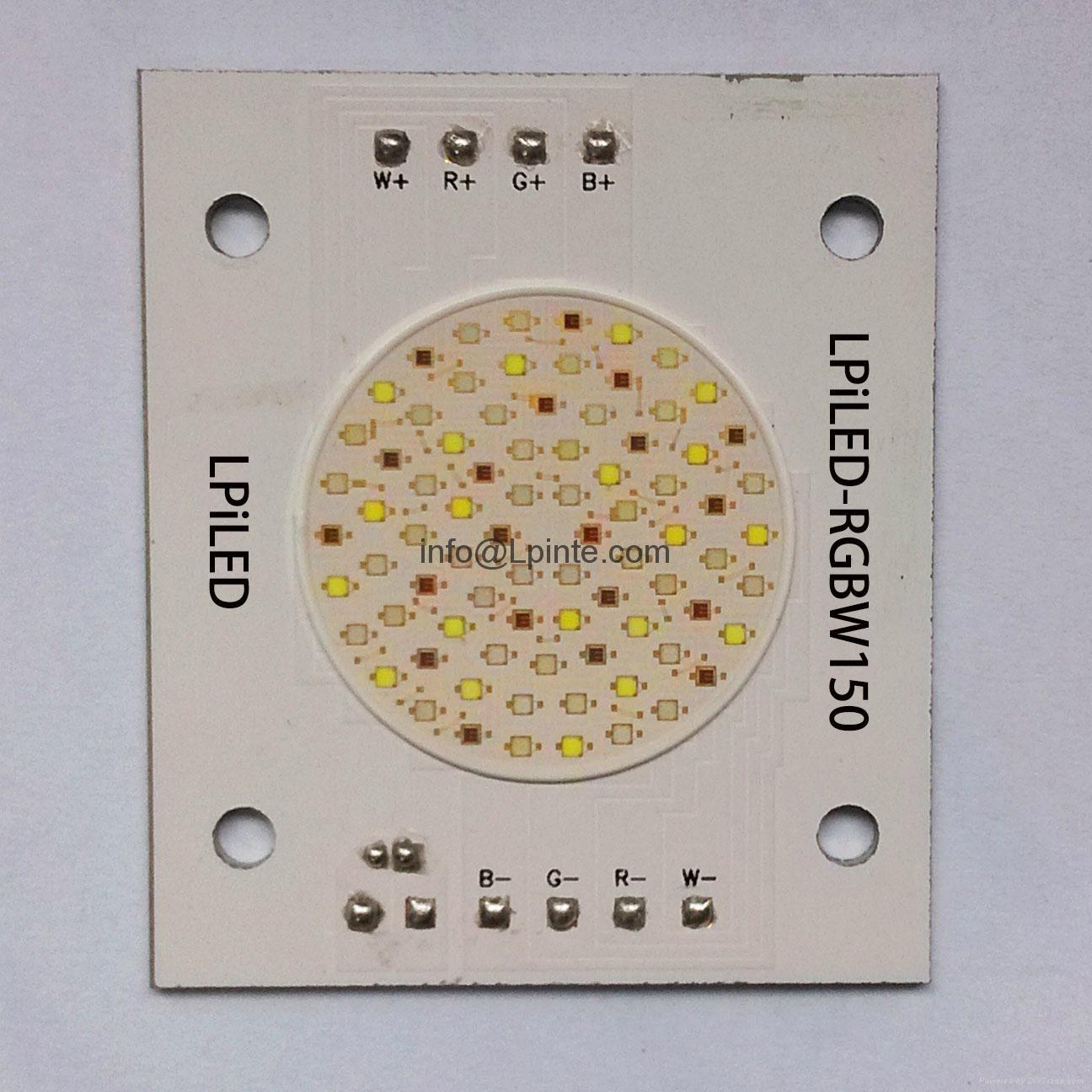 RGBW LED RGBW CHIP LED RGBW COB LED RGB LED MODULE WW CW RGBY 2