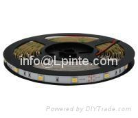 led strip light Fita LED святло вадзіць пракладкі