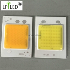 AC COB LED 50W led Punto (Hot Product - 1*)