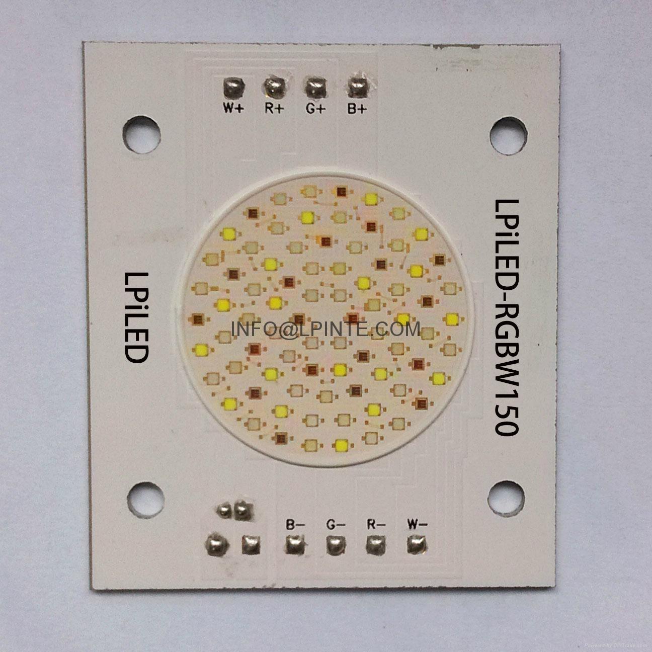 RGBW LED RGBW CHIP LED RGBW COB LED RGB LED MODULE WW CW RGBY 13