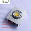 30w 50w 60w 80w 100w 120w High Power Chip Led Module Cob