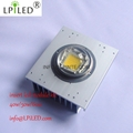 30w 50w 60w 80w 100w 120w high power CHIP LED module cob power led