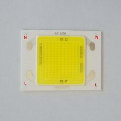 AC LED 220V LED AC COB LED  50w 30w 60w