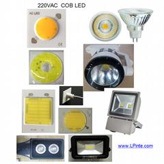 AC COB LED 50W led Punto (Hot Product - 1*)