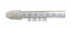 潛水七色龍魚水晶燈LED5050貼片