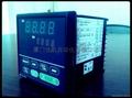 RKC REX - P96 can program temperature