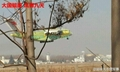 CHINA AIR FORCR Y-20 THE SUCESS OF FIRST FLIGHT
