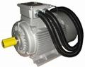GW series high temperature motors