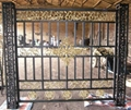 Gate and Suiting fence 2