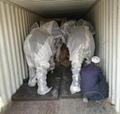 Elephant life size