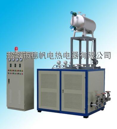 电加热导热油炉 4