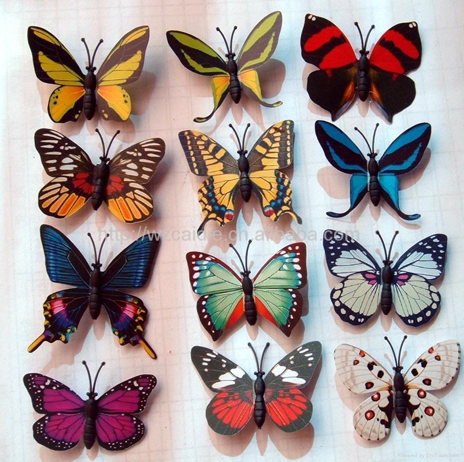蝴蝶鞋子图片素材