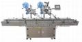Flat Surface Automatic Labeling Machine