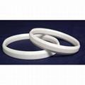 Ceramic Ring 1