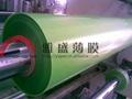 F150 F200 按鍵用半透明磨砂PET膜 2