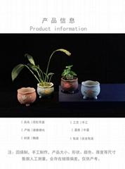 供應陶瓷多肉花盆