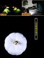 陶瓷鏤空小夜燈 3