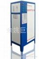 电加热蒸汽发生器 24KW 3