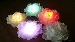 LED七彩牡丹燈