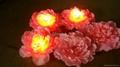 LED七彩牡丹燈 3