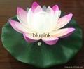 led lotus 2