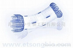 Surgical Stents Series Ⅱ