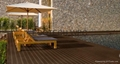 Wood Plastic composite (WPC) Decking& flooring 3