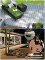 Wood Plastic composite (WPC) Decking& flooring(135X25mm) 3