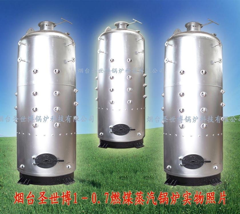 烟台锅炉燃煤蒸汽锅炉 1