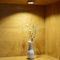 LED 橱柜灯 12