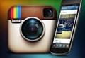instagram:supplyasia