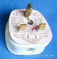 英标二极带接地插头带保险丝13A250V白色(WSP-7-W) 4