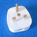 英标二极带接地自配线插头(WSP-7)