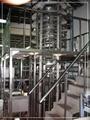 Net screw conveyor belt