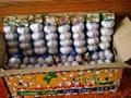 河南白蒜小包装하남 흰 마&#