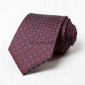 China Manufacturer Design Pattern Special Logo Tie