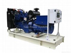 Cummins Diesel Generator (TCM25-TCM1250)